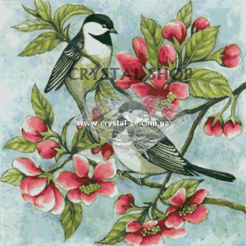 Где купить птицы рыбы и цветы купить подарок на 8 марта обруч в спорт доставке