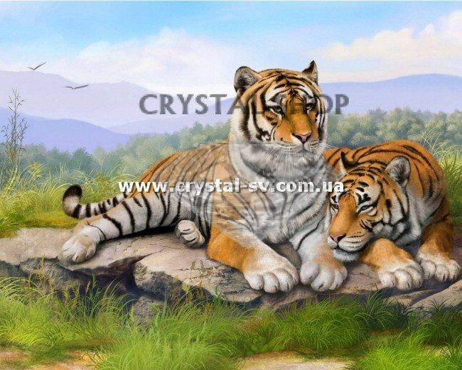 Алмазная вышивка тигры купить