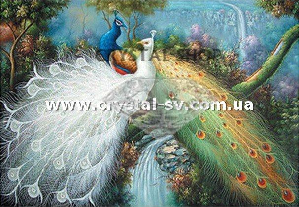 Алмазная картина павлины наконечники микрон казань официальный сайт